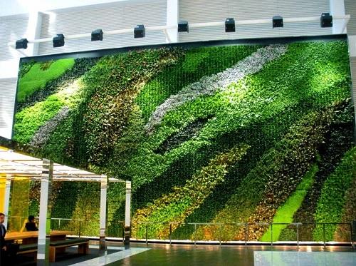 Giardino verticale interno 1