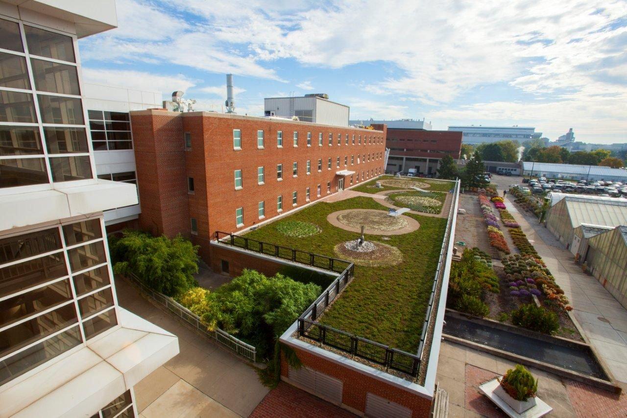 Roof hospital
