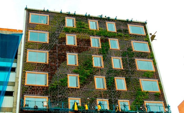 Giardino verticale esterno 3