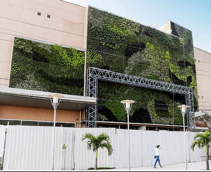 Giardino verticale esterno 4