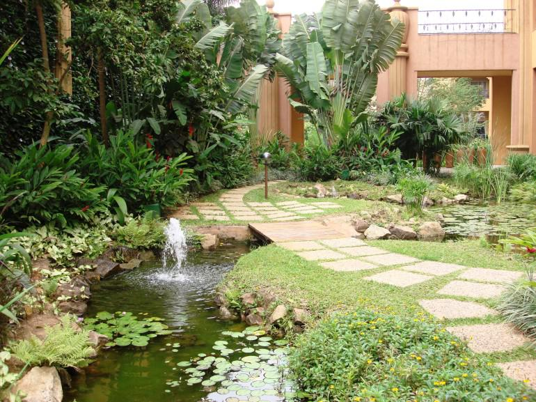 Giardino tropicale cos 39 e realizzazione planeta srl - Giardino tropicale ...