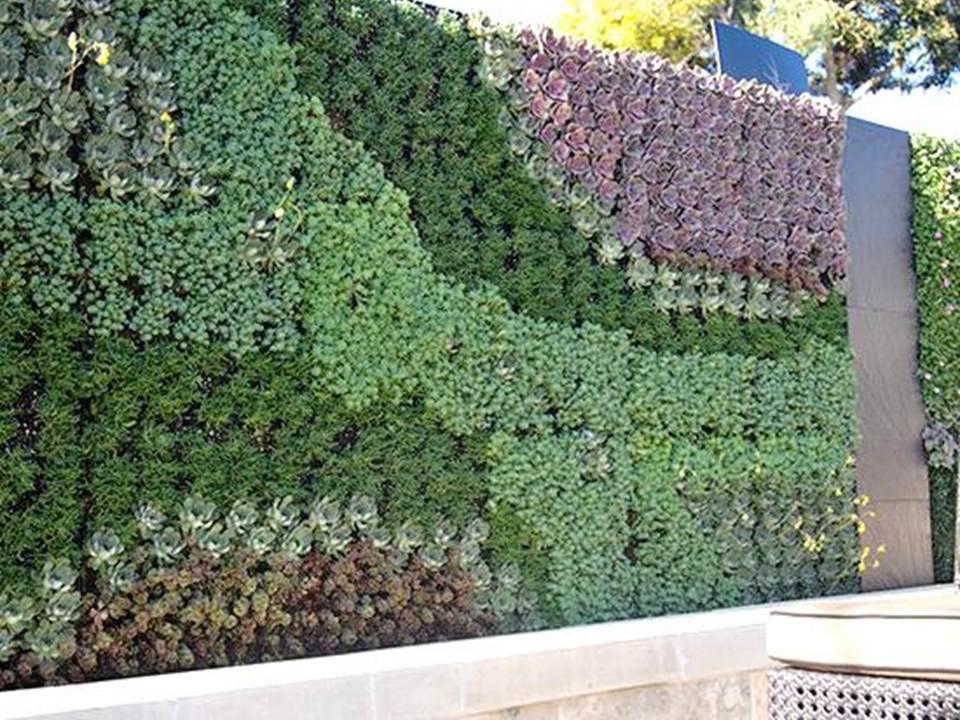 Green wall planeta grandi vivai sciacca group - Giardino verticale in casa ...