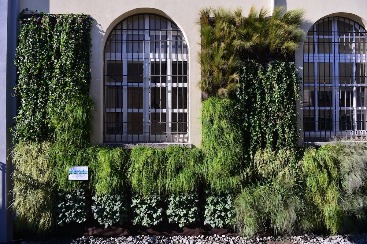 Costo giardino verticale preventivo realizzazione per esterni ed interni planeta srl - Giardini verticali interni ...