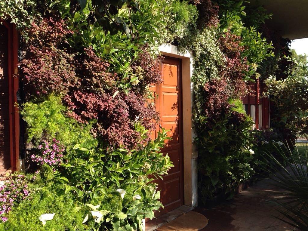 Costo giardino verticale preventivo realizzazione per - Giardini verticali interni ...