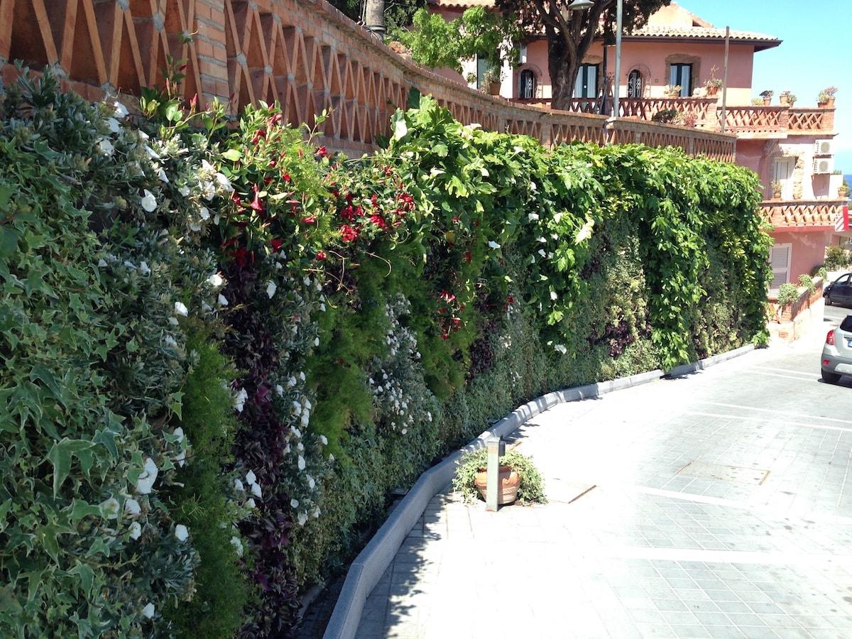 Costo giardino verticale preventivo realizzazione per esterni ed interni planeta srl - Prato verticale per interni ...